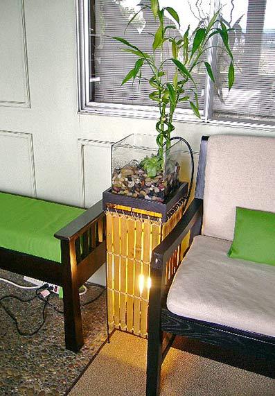 комнатные цветы плюс водоем в квартире