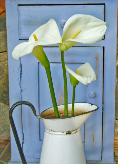 декорирование садовыми цветами