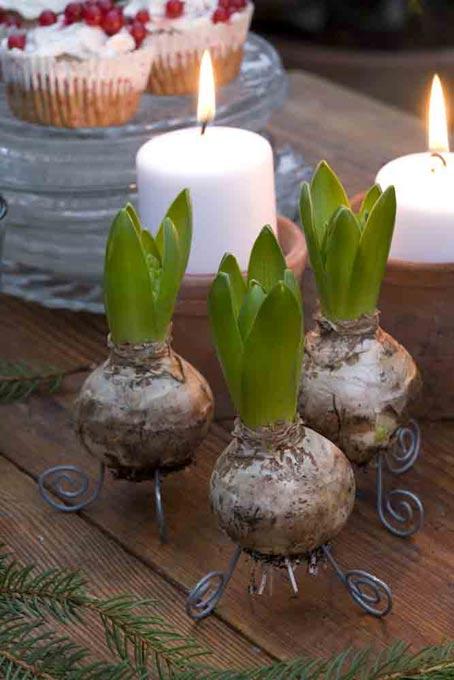 дачный декор своими руками свечи