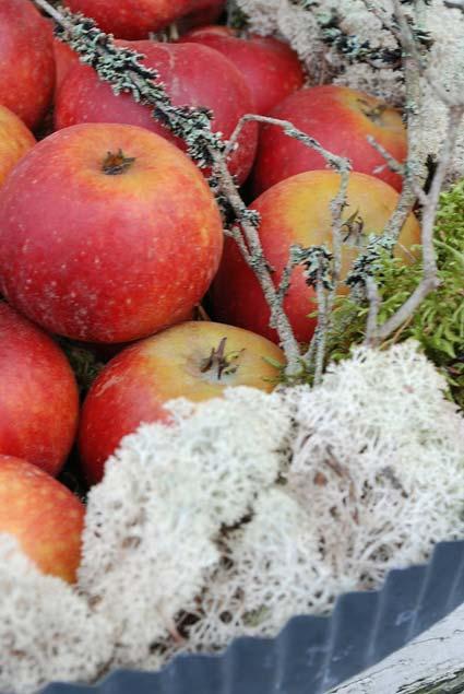 дачный декор яблоки