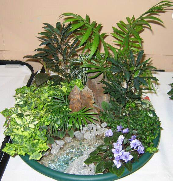 мини сад композиция из растений в квартире