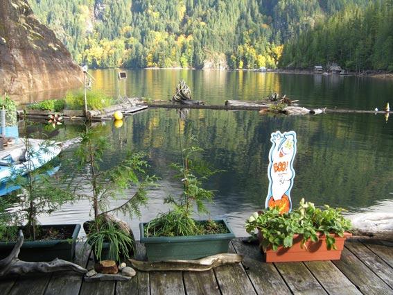 сад на воде экологичный образ жизни на озере