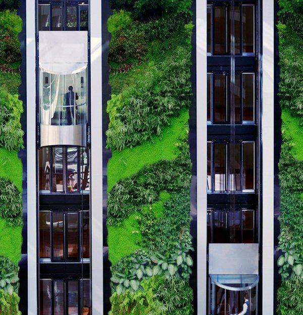 Пример вертикального озеленения стены дома