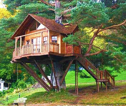 Красивый домик на дереве
