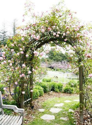 Вертикальное озеленение - арка из роз