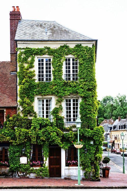 Фасад дома увитый плющом