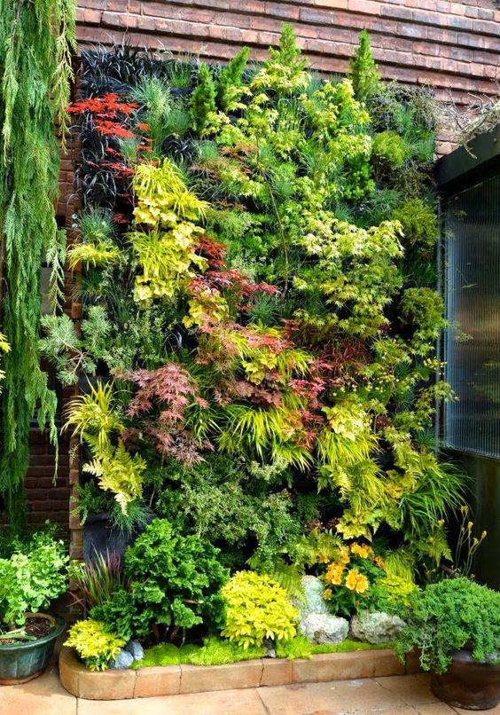 Вертикальное озеленение на даче - идеи
