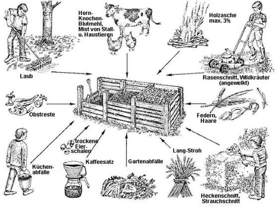 Что можно в компост