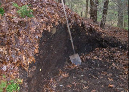 БОльшая компостная куча из листьев